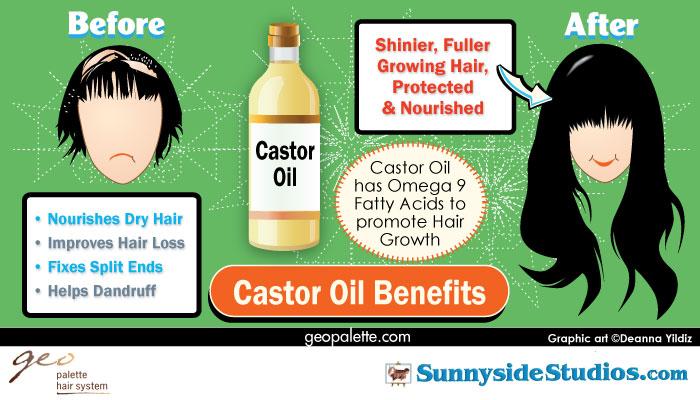 Castor Oil Infographic